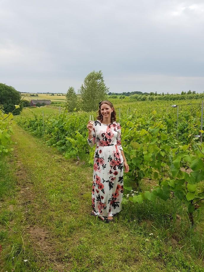 Maxarna hos Hällåkra vingård